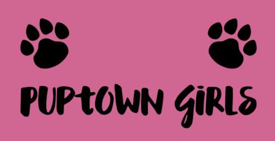 Puptown Girls Dog Lounge & Spa